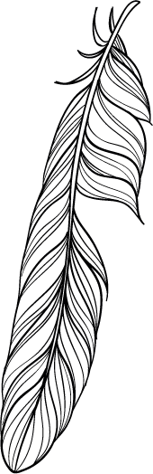 Black outlined feather